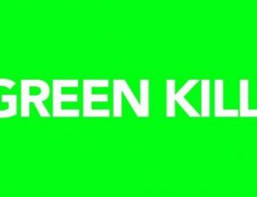 SPIRITED AT GREEN KILL GALLERY